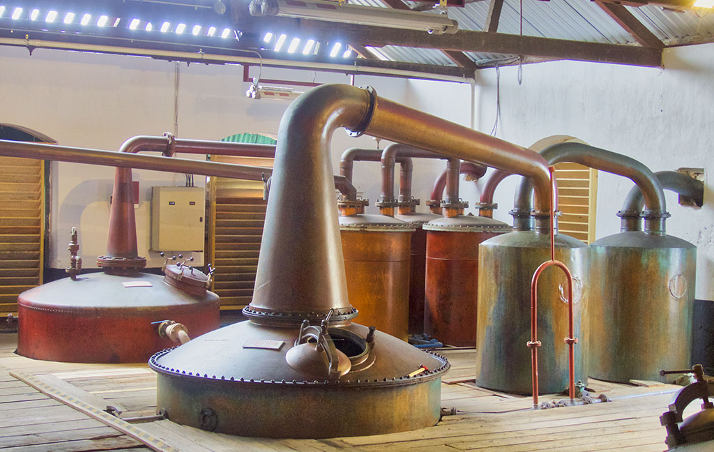 Rum Cruise - distillery tour